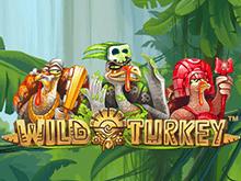 Wild Turkey на зеркале Фараон